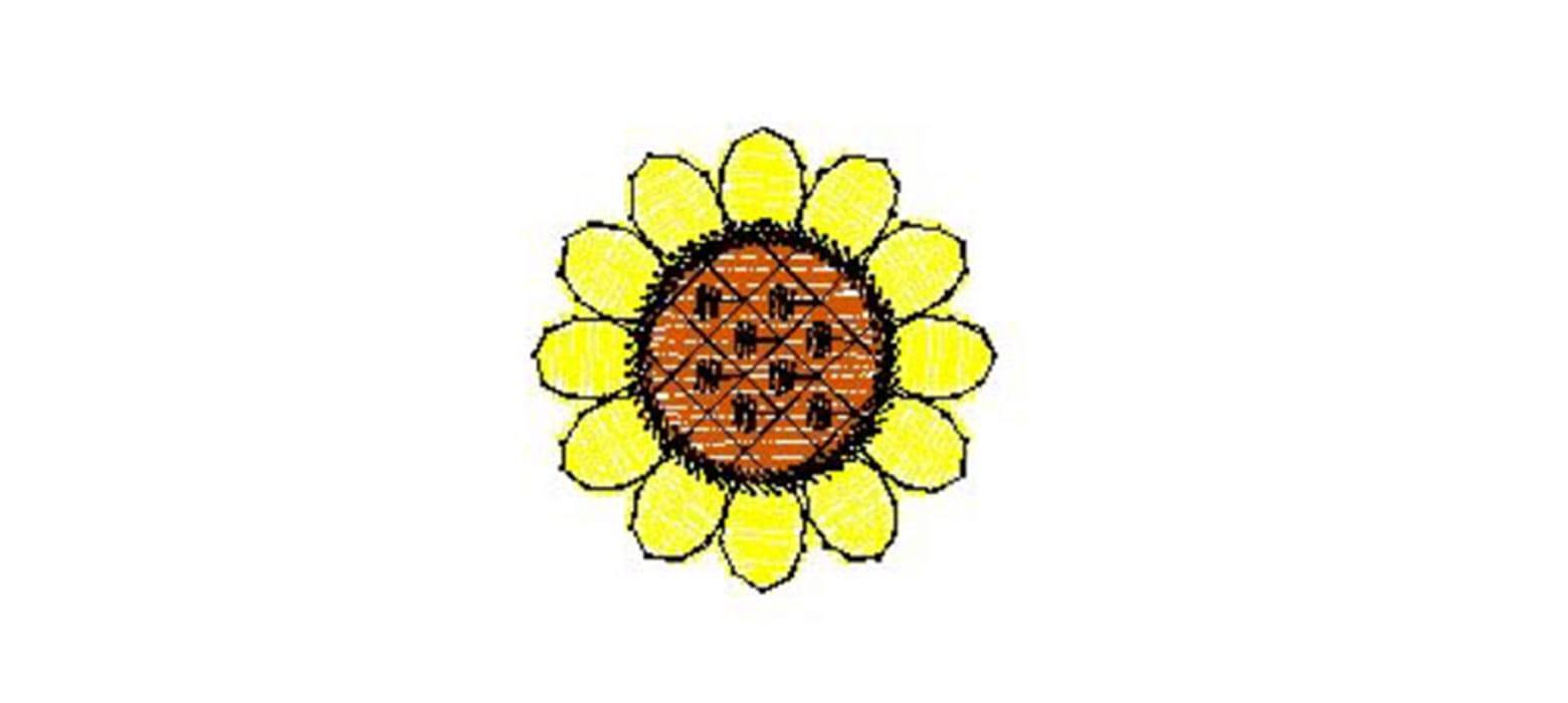 Zeichnung einer Sonnenblume
